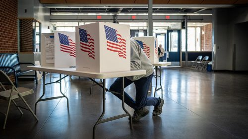 Person voting in poll booth