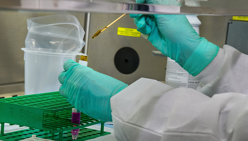 Close-up of CDC worker with gloves